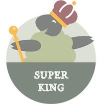 Super King - Monnow Ottoman Base