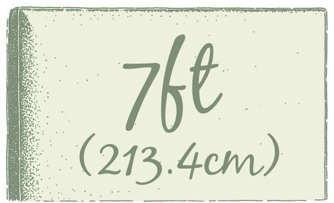 7ft (213.4cm)